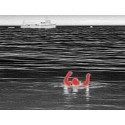 Cámara Termográfica FLIR Ocean Scout 240