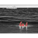 Cámara Termográfica FLIR Ocean Scout 640