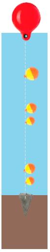 Lowrance-hook2-4x-cobertura.png